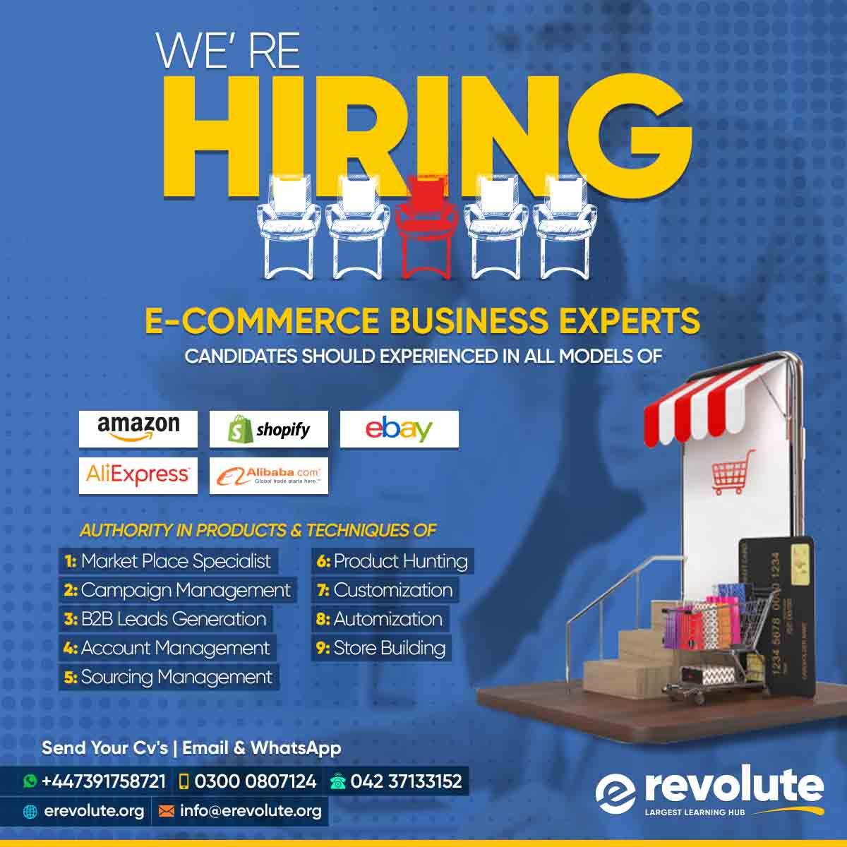 ecommerce expert job